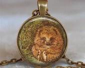 Mr Pricklepin pendant, hedgehog pendant, hedgehog necklace, story book pendant, Beatrix Potter pendant, keychain