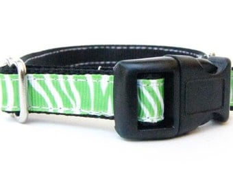 Zebra Dog Collar - Green Zebra Collar - Tiny Dog Collar - Zebra Print Dog Collar, Clearance