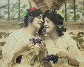 French Antique Postcard - Women with Bunches of Grapes