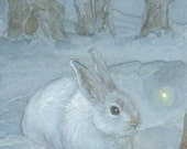 Snow Hare 8.5x11 Signed Print Illustration