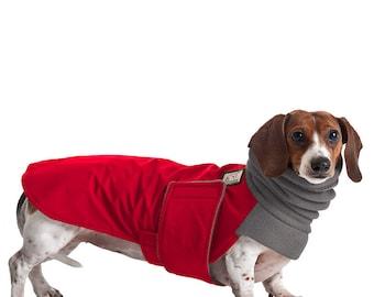 DACHSHUND Winter Dog Coat, Winter Coat, Dog Coat, Dog Clothing