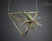 The Small brass himmeli for air plants // Plant is not included