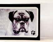 Old, but my love for you is new everyday Senior Dog  Set of 2 Greeting Cards