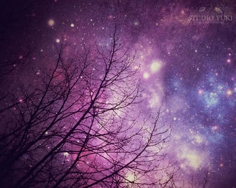 Nature Photography, Starry Night Sky, Surreal, Forest, Purple, Trees, Fine Art, Large Wall Art, Abstract, Stars, Home Decor, Tree Branches
