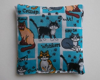 Playful Cats 'All Catnip' Cushion Toy. Blue, Green, Yellow, Pink or Red