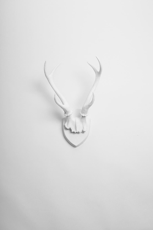 white faux taxidermy x large faux deer antler trophy. Black Bedroom Furniture Sets. Home Design Ideas