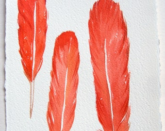 Coral Feathers Illustration Watercolor painting of feather Feather art original Nursery Art Watercolor painting 7,5 by 11