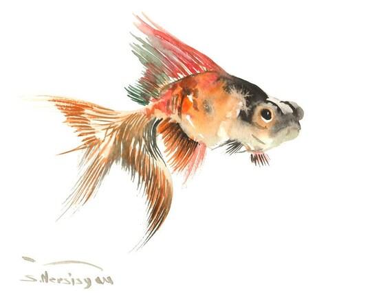 Poisson rouge aquarelle originale peinture 9 x 12 dans for Poisson rouge aquarium 10l