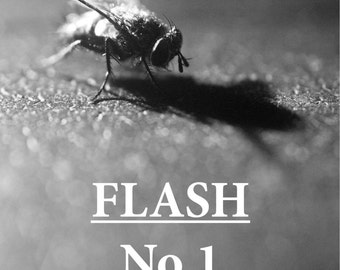 Flash Zine No.1