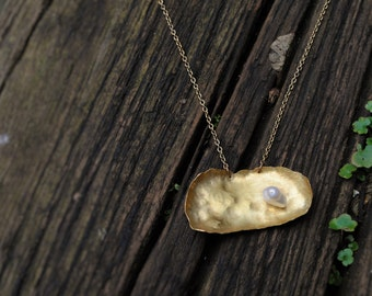 Golden oyster and pearl necklace from recycled brass with freshwater pearl and back detailing