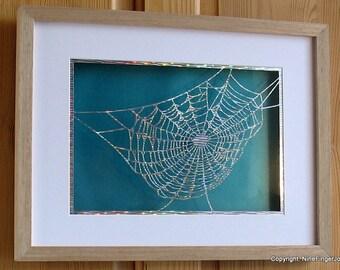 Paper Cut Art, Paper Cutting Art, Paper Cut Out, Wall Art, Pictures, Papercut, Paper Cut, Papercutting, Paper Cutting, Papercut Art, Cobweb