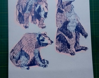 Limited edition riso print of Polish bears, blue and fluorescent orange