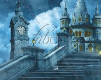 Cinderella Backdrop / Cinderella Birthday Party Banner / Cinderella Birthday Backdrop / Disney Princess Photo shoot (FD5076)