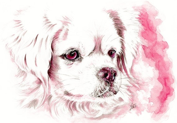 Dog Art Print - Pink dog art - A4 art print - Tibetan Spaniel - spaniel illustration - dog painting - home decor - dog lover gift - pink art