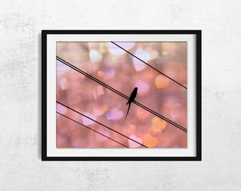 Bird on Wire Photography - Bird Photography - Bird Wall Art - Bird Wall Decor - Nature Wall Art - Nature Wall Decor - Bird Art