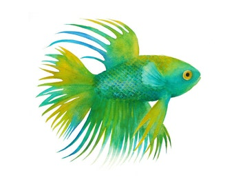 Fish Watercolor painting - Giclee Print of original painting. Art Print. Nature or Animal Illustration. Turquoise and Emerald.