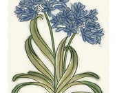 "Agapanthus flower Wall Art - Botanical Artwork - Botanical Decor 4 for 3 SALE 4"" X 6"" print"