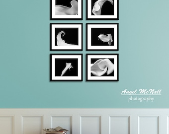 Black and White Flower photography, Calla Lily print, wall collage, Set of Six, elegant, nature, fine art photography prints