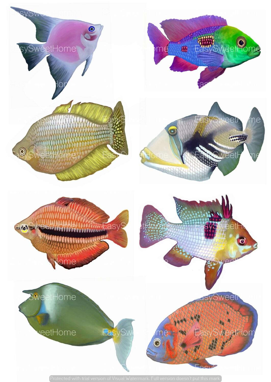 Fliesenaufkleber tropische fische 8 set 10x125 cm - Fliesenaufkleber fische ...