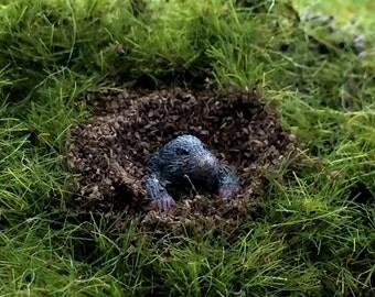 Animal Mole garden scale 1:12 Dollhouse miniature