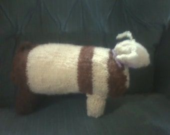 large dachshund pup knit