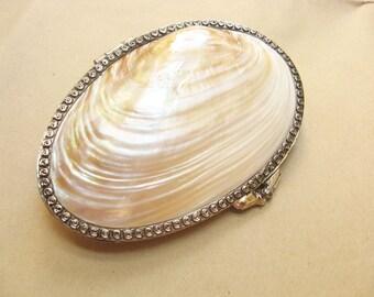 Hand Carved Sea Shell Coin Purse Jewelry Box Trinket Box Pill Box L