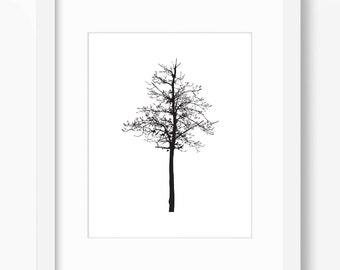 Tree Print,Tree Art, Tree Wall Art, Tree Silhouette, Winter Tree, Bare Tree, Leafless Tree, Winter Print, Winter Art, Tree Silhouette Print