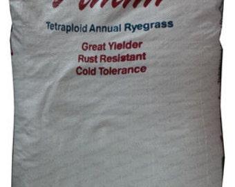 Attain Tetraploid Annual Ryegrass Seeds