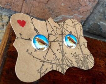 Little Perched Owl Stud Earrings