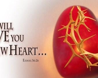 New Heart (BNH-G608-1)