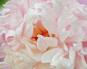 Flower Art Print, Pink Peony, Peony Flower Petals, Spring Flower Blossom, Mother's Day, Home Wall Decor, Flower Macro, Fine Art Photography
