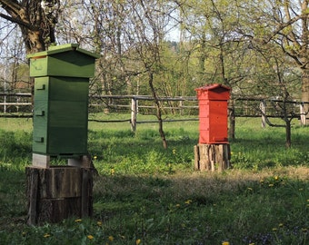 Classical Warre beehive