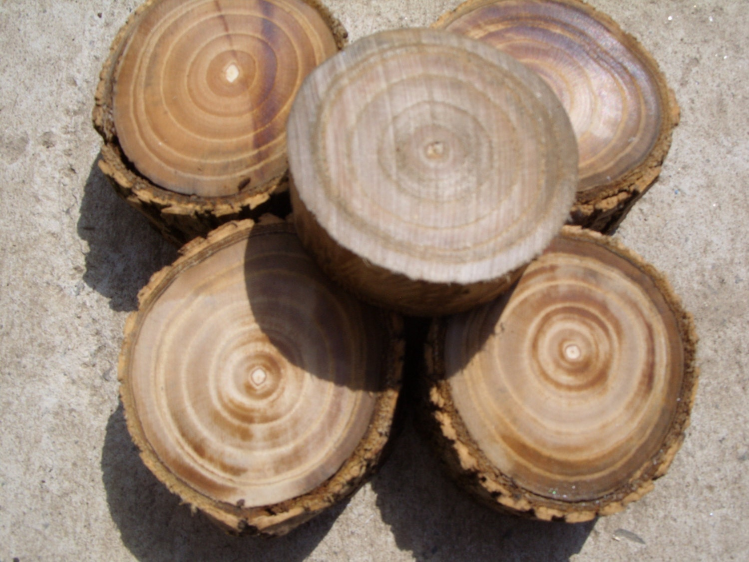 5 wood blocksdiy crafts wood pieces miniature tree stump for How to make illuminated tree stumps