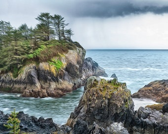 Wild Pacific Trail:  Ocean, waves, clouds, rain and rocks define the rugged and dramatic west coast of Vancouver Island.