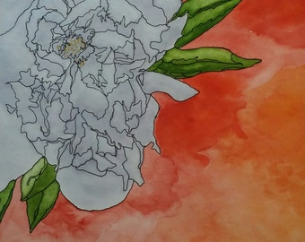 Peony III - watercolor and ink on paper