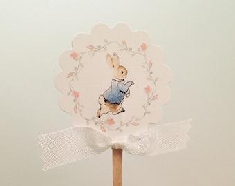 Peter Rabbit Cupcake Toppers Picks-Pink Rose Cake Topper Decoration-Set of 12