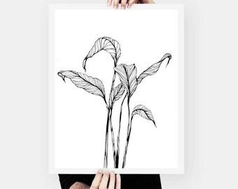 """Leaves, Black and White Art ,Pen & Ink Art Print 8.3"""" x 11.7"""""""