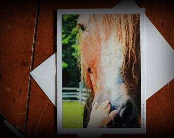 Country - donkey, horse, cow, fork, wheel, wheat, harvest: 4 photo blank greeting cards x 6 with envelope