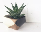 Ceramic Planter Black White / Pottery for Succulents, Cacti or House Plants / The Mauna Planter / READY TO SHIP