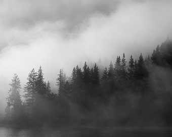 "Black and White Photography Print - Fine Art Landscape Fog Mist Minimalist Trees Living Room Art Fog on Water    ""Dark Water"""