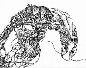 Fantasy Creature. Original art, Pen and ink drawing, Black and white art, Pen and ink art, Ink illustration, Doodle art, Original drawing