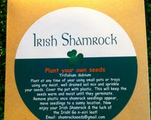 Irish Shamrock Seed Packet. Grow Your Own Lucky Clover, With Free Complimentary Irish Blessing Bookmark With Every Order