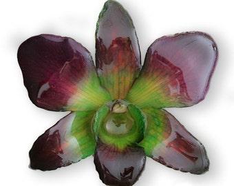 ORCHID HAIRCLIP
