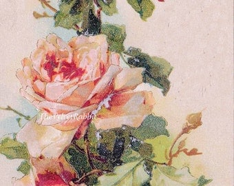 Canvas Paper Print*Roses very old image*Sublime*Victorian*Stunning*8x10 inches*Free shipping in the USA