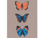Butterfly Silkscreen Print - Trio II