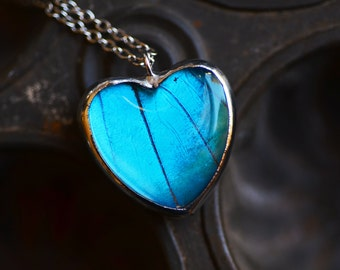 Real Butterfly Wing Necklace gift for her Butterfly Heart Necklace Heart Jewelry Silver Heart Pendant  Butterfly Jewelry taxidermy Bug