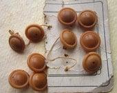 Vintage Vegetable Ivory Buttons -  Tagua Nut