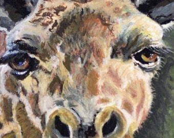 Aceo Giclee Print Giraffe Face by RSalcedo Tiny Art Atc Exotic animal FFAW
