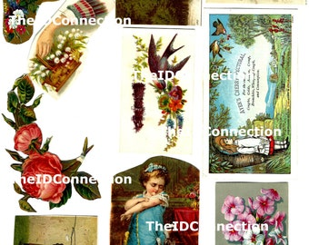 Victorian Trade Card College Collection, Digital Download, Victorian Children, Flowers, Roses