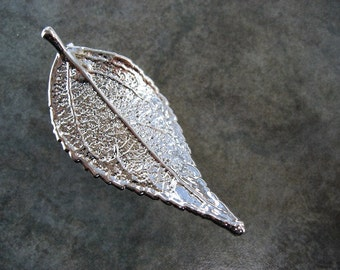 Sale - Free US Shipping - Real Leaf Brooch/Pin and Pendant - Sterling Silver - Evergreen